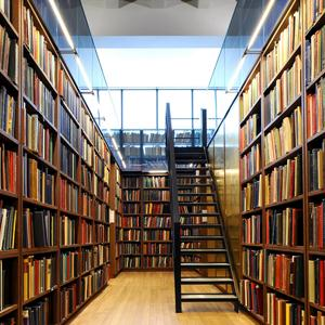Библиотеки Серышево